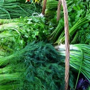 market 196518 640 300x300 Planning For A Garden